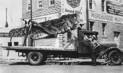 Fotomontagem! Grilo sendo transportado de caminhão!