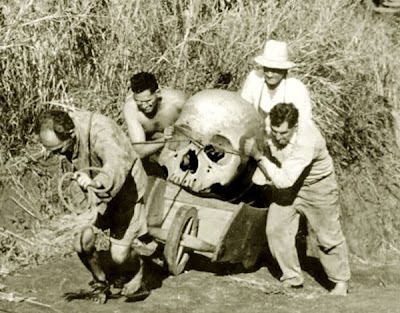 7-big_ancient_skull