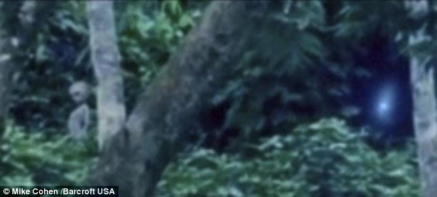 Alien filmed in Brazil rainforest - Será que é verdadeiro ou falso?