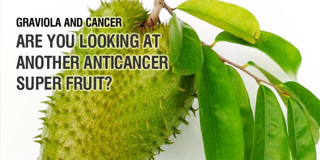 Chá da folha da graviola não cura o câncer! (foto: Reprodução)