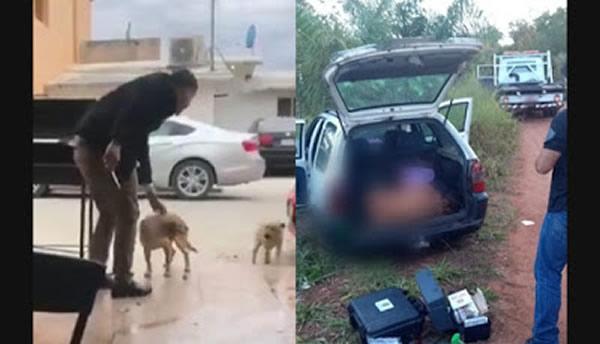 O homem que esfaqueou cachorro em bar foi morto com 50 facadas?