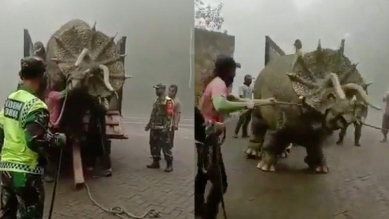 Vídeo mostra um tricerátops sendo retirado de um caminhão! Será verdade?