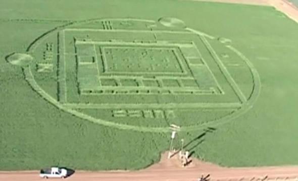 Imenso agróglifo teria sido descoberto em uma fazenda na Califórnia! ETs? (foto: Reprodução/YouTube)