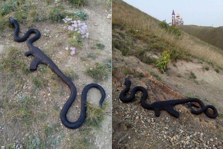Uma cobra engoliu um fuzil AK-47 na Rússia?
