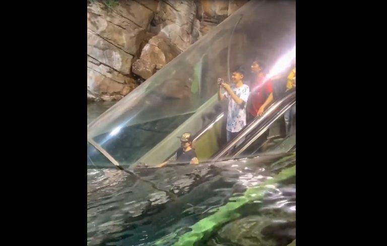 Escada rolante leva turistas para ver o fundo do mar na China! Será verdade?