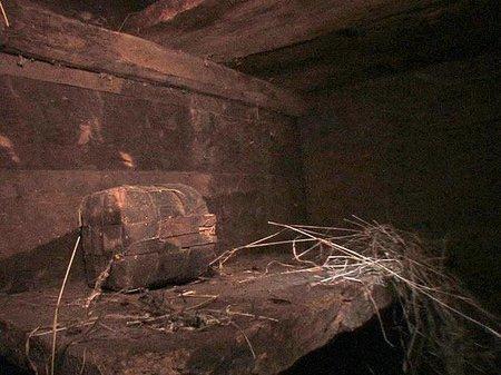 Uma das fotos que mostra o interior da Arca de Noé! (foto: Divulgação)