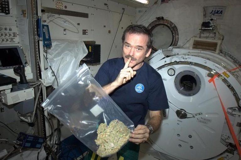 Foto de astronauta segurando um saco com maconha é verdadeira ou falsa?