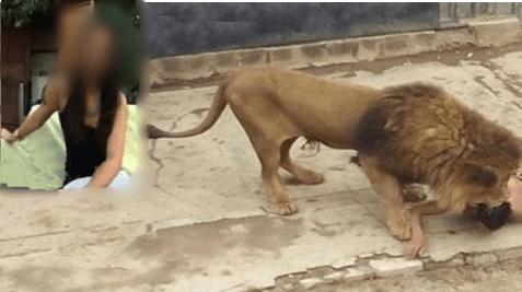 Atriz de filmes adultos teve a cabeça arrancada após tentar cena com leão?