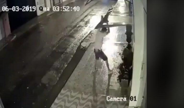 Um jovem acabou morrendo após destruir a fachada de um terreiro de Candomblé, na Bahia?
