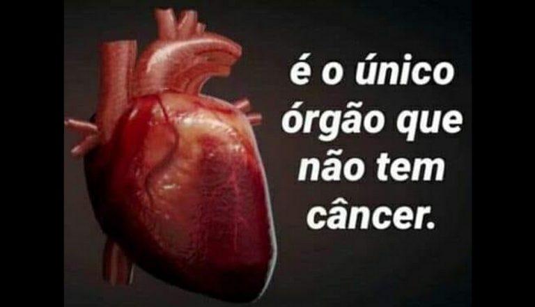 Será verdade que o coração é o único órgão que não desenvolve câncer?