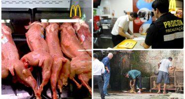 Polícia Federal teria descoberto que o McDonald´s estaria vendendo carne de cachorro! Será verdade? (foto: Reprodução/Facebook)