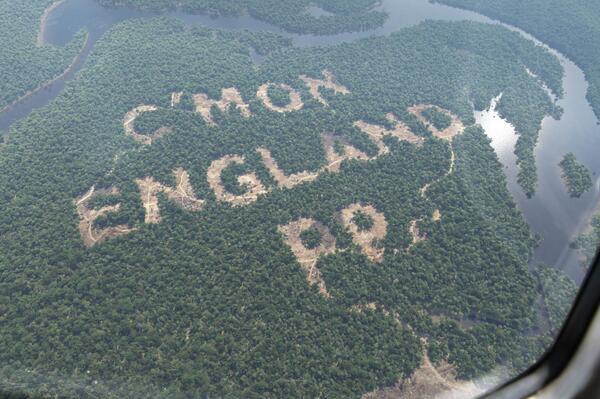 Empresa irlandesa teria desmatado floresta amazônica como incentivo à seleção da Inglaterra! Verdade ou farsa? (foto: Reprodução/Twitter)