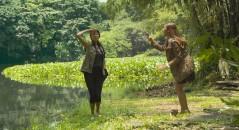 Crocodilo ataca moça durante tentativa de foto! Será verdade? (foto: Reprodução/YouTube)