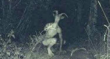 Criatura demoníaca teria atacado um grupo evangélico durante orações! Será verdade? (foto: Reprodução/Faceboook)