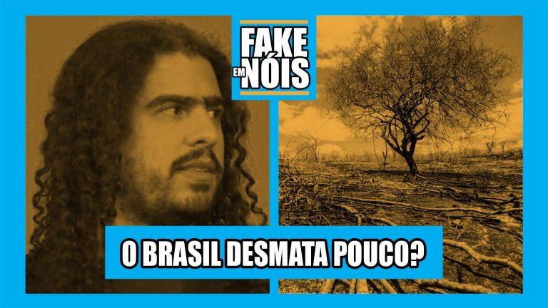 Fake em Nóis! O desmatamento no Brasil é preocupante mesmo?