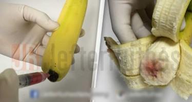 Banana contaminada com HIV estariam chegando no Brasil! Será verdade?