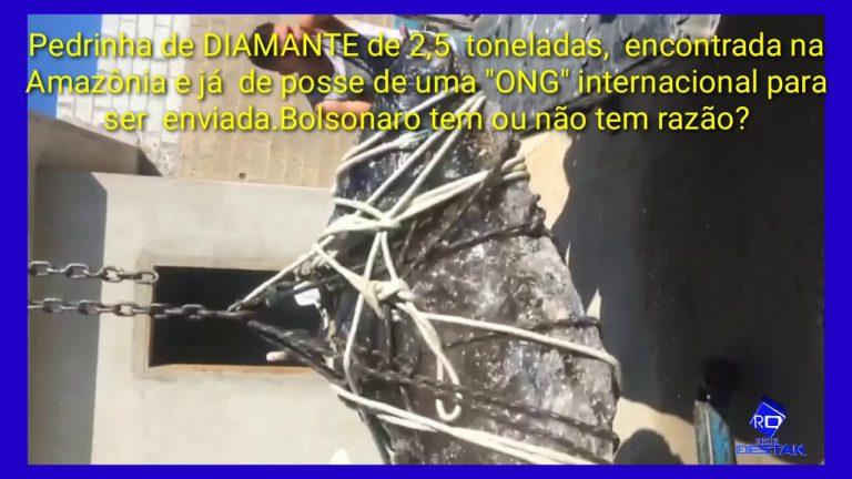 Uma ONG foi flagrada roubando um diamante de 2 toneladas e meia?