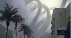 Criatura estranha surge no Brasil! Será verdade? (foto: Reprodução/Facebook)