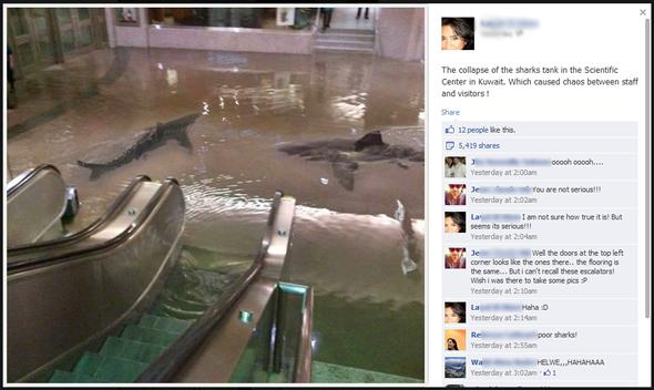 Imagem postada no Facebook teve 5000 compartilhadas em poucas horas!
