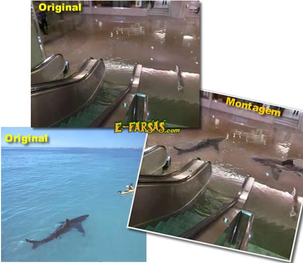 Fotos usadas na montagem da enchente do shopping