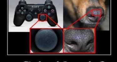 Focinho de cães são usados em controles de videogames! Será verdade?