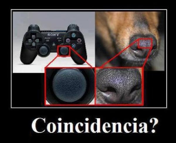 Focinhos de cães são usados em controles de videogame?