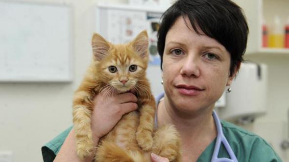 A veterinária e o Roger, após tratamento! (foto: Reprodução)