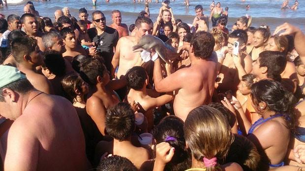 Argentinos teriam matado um golfinho apenas para tirar selfies com ele! Será Verdade? (foto: Reprodução/Facebook)