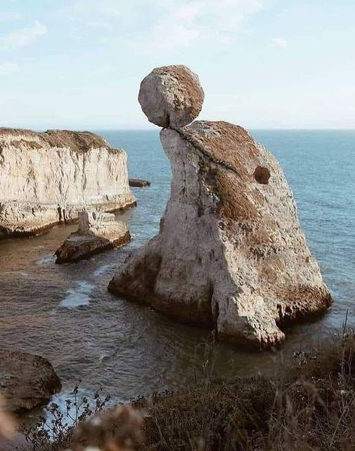 Ilha em forma de golfinho! Será verdade?