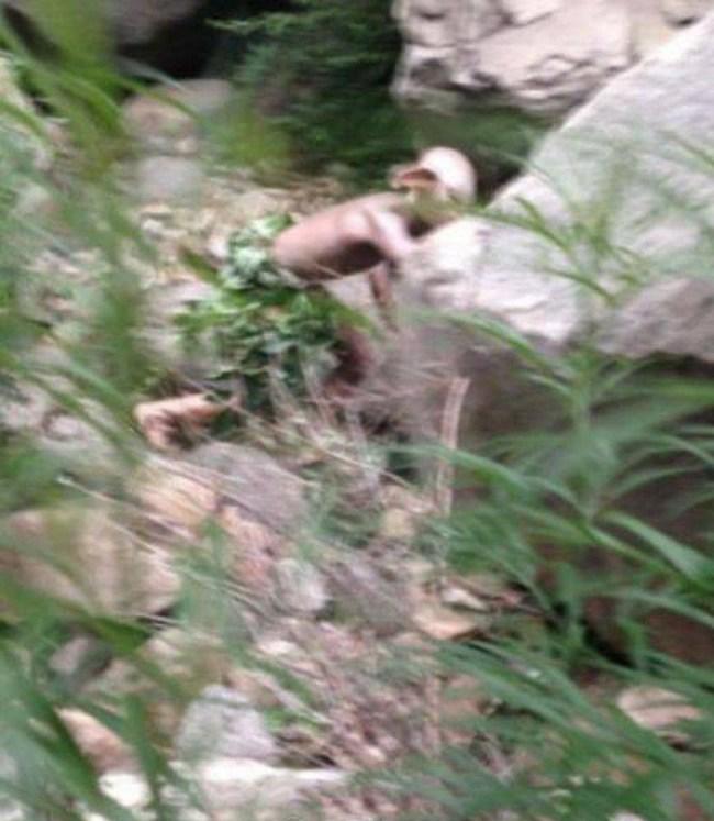 Foto tirada de outro ângulo tira todo o mistério da cena! (foto: Reprodução/Meibo)