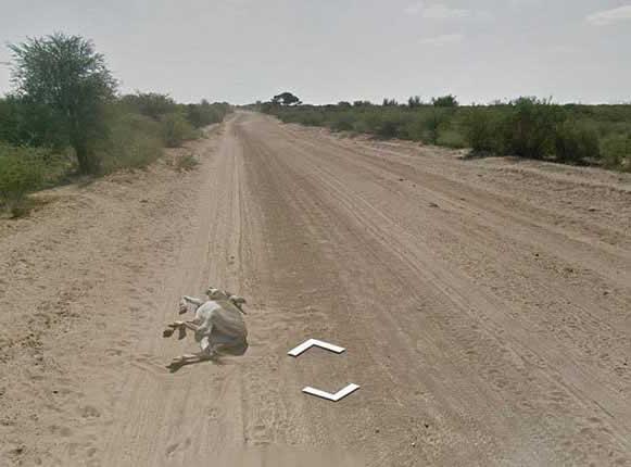 Carro do Google Street View atropela burro na estrada! Será?