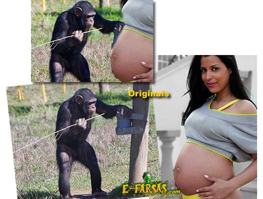 Análise da foto da garota gravida de um chipanzé!