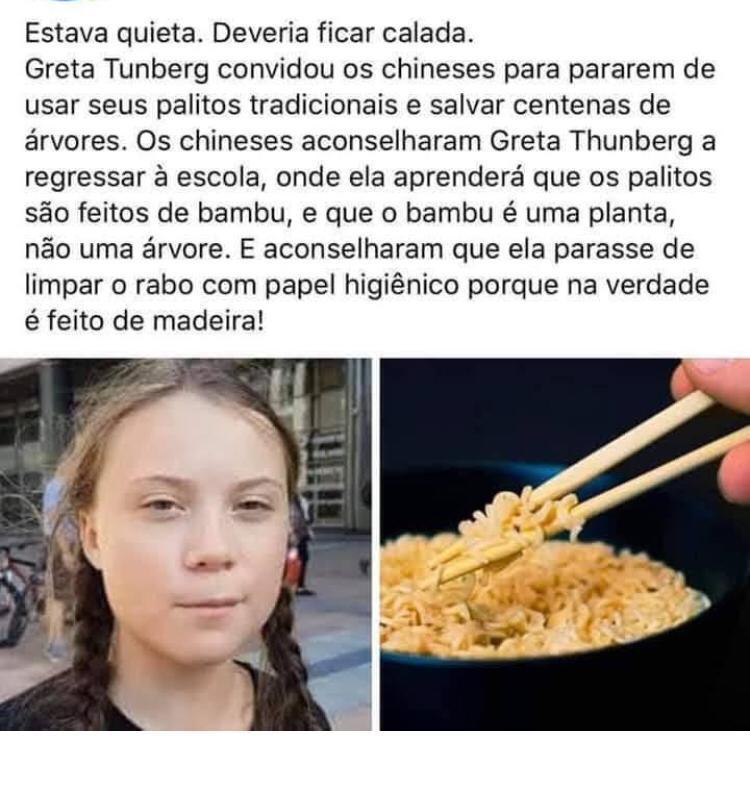 Greta Thunberg disse para os chineses pararem de fazer hashi com árvores de desmatamento?