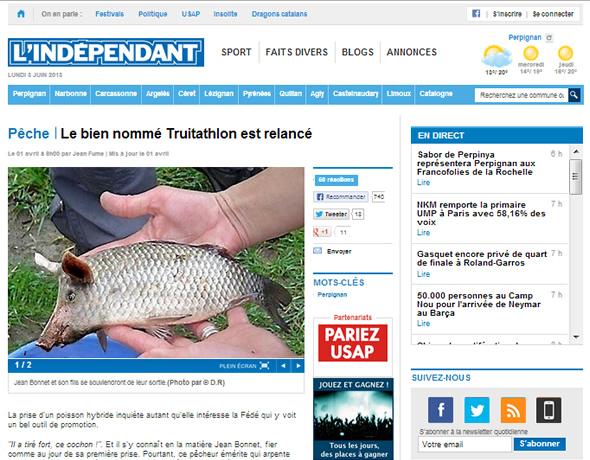 Pegadinha do dia da mentira do jornal francês L'Indépendant usando a fotomontagem do peixe-porco! (reprodução)