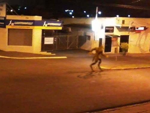 Lobisomem assusta moradores nas ruas de Ceilândia! Será verdade? (foto: Reprodução/Facebook)
