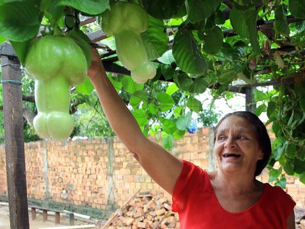 Mulher exibe sua plantação de uma fruta em forma de pênis! Será verdade? (créditos da  foto no final desse artigo)