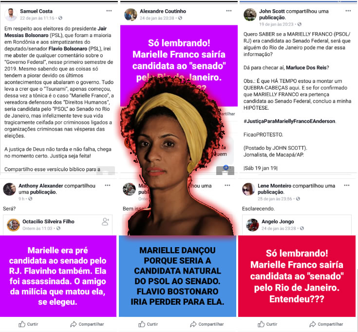 É verdade que Marielle Franco foi morta por Flávio Bolsonaro por tentar concorrer ao Senado?