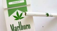 A Souza Cruz estaria se preparando para lançar o Marley, um cigarro a base de maconha! Será verdade? (foto: Reprodução/Twitter)