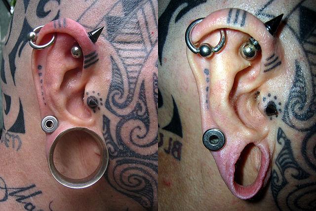 Alargador de orelha! (foto: Wikipédia)