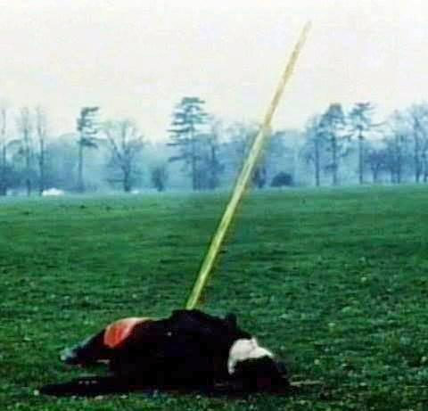 Mulher teria sido atingida por uma lança de urina congelada! Verdade ou farsa? (foto: reprodução/Facebook)