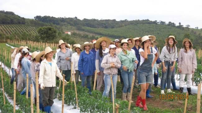 Cooperativa em Noiva do Cordeiro mostra a força do trabalho feminino em conjunto! (foto: reprodução/facebook)