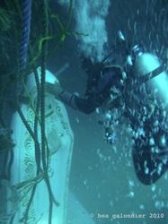 Mergulhadores retirando as cordas que levaram a estátua ao fundo do mar! (foto: Divulgação)