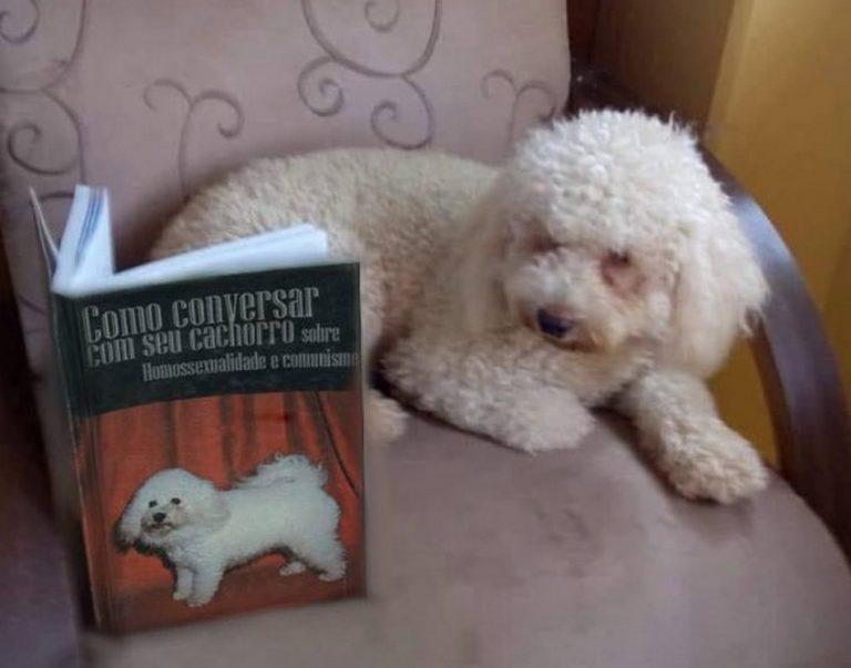 Livro ensina como conversar sobre homossexualidade e comunismo com cachorros?