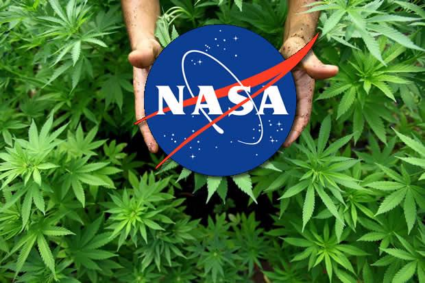 A NASA estaria recrutando pessoas que fiquem fumando maconha por 70 dias! Será verdade? (foto: Reprodução/Facebook)