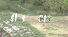 Homem-sereia teria sido capturado no Rio Vístula, na capital da Polônia! Será que isso é verdade ou farsa? (foto: Reprodução/YouTube)