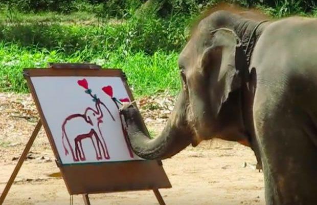 suda-the-elephant-painting