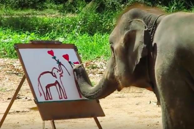 Elefante pintando quadros? Efarsas responde #4!