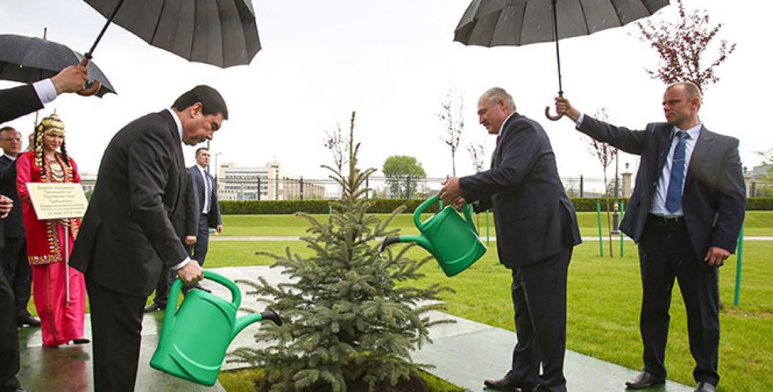 Michel Temer estaria regando uma planta na chuva! Será verdade? (foto: Reprodução/Facebook)