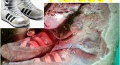 Múmia estaria usando tênis da Adidas? (foto: Reprodução/Facebook)