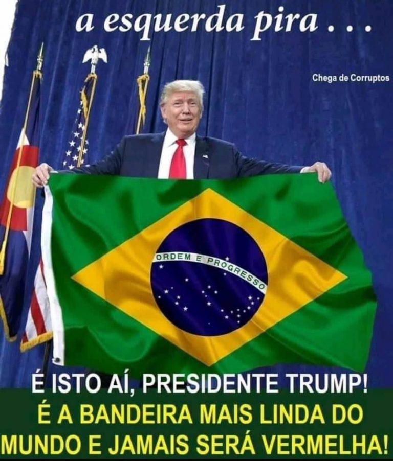 A foto que mostra o presidente Trump segurando a bandeira do Brasil é real?